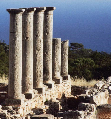 Cyprus, Kourion, Sanctuaire d'Apollon, 2005 - ©Photo: Patricia Cardet